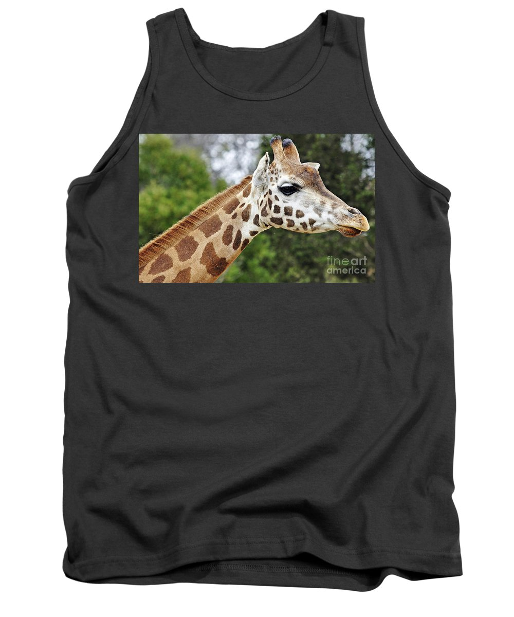 Giraffe Tank Top featuring the photograph Giraffe Beauty by D Hackett