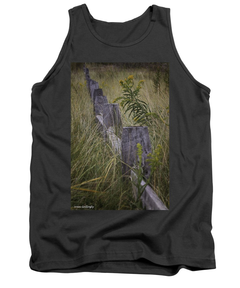 Beach Tank Top featuring the photograph Goldenrod By The Fence by Fran Gallogly