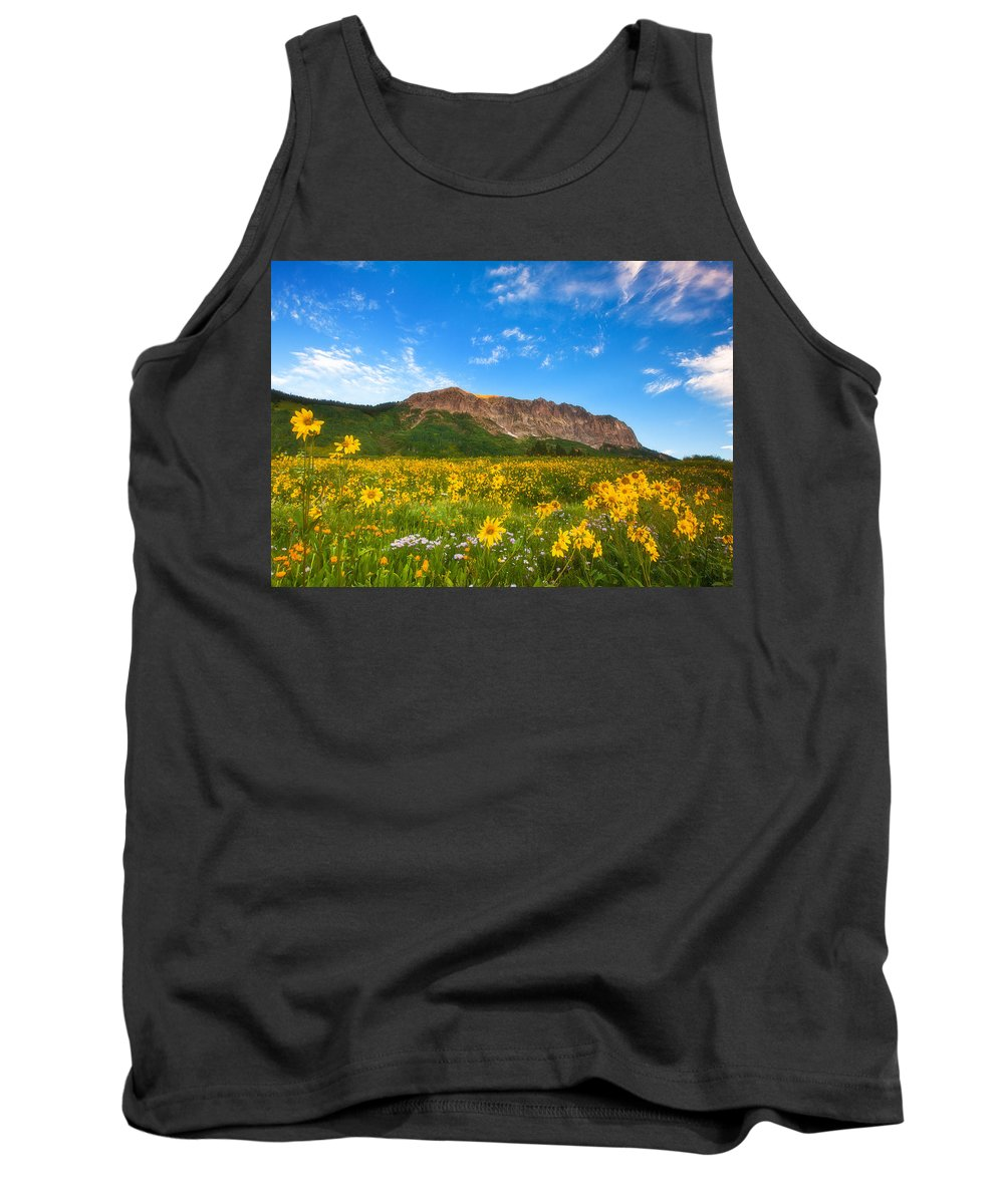 Colorado Landscapes Tank Top featuring the photograph Gothic Meadow by Darren White