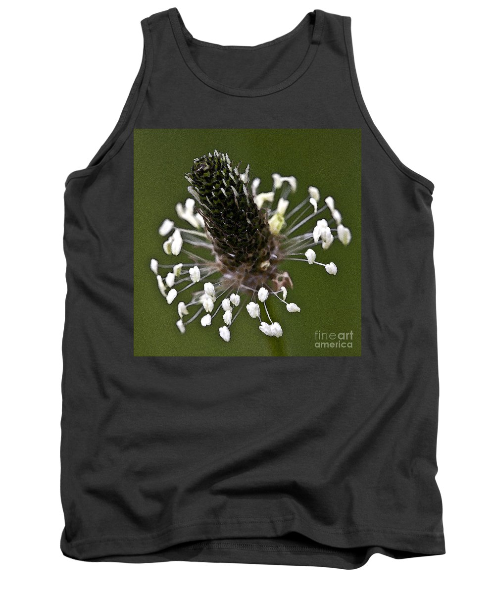 Heiko Tank Top featuring the photograph Grass Bloom by Heiko Koehrer-Wagner