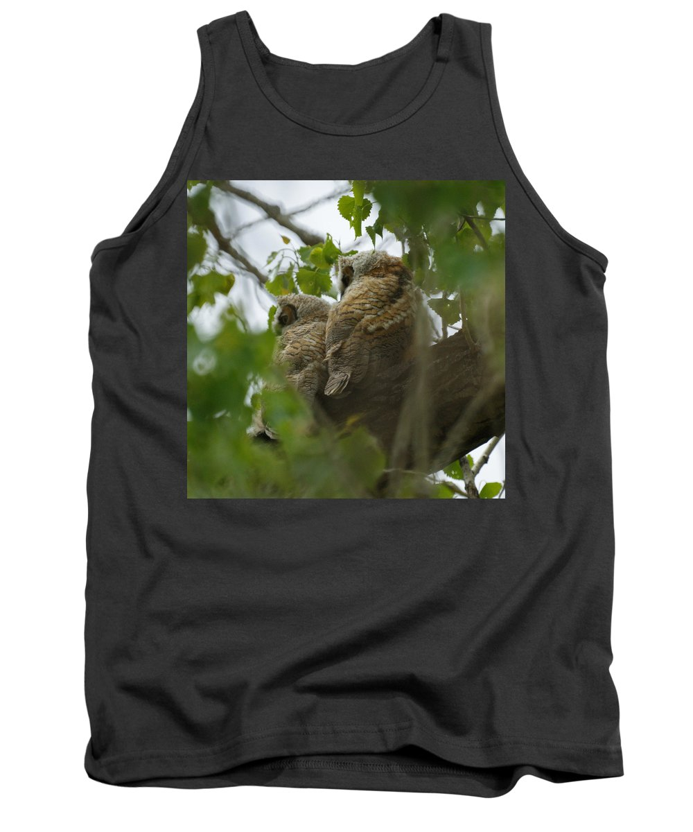 Birds Tank Top featuring the photograph Great Horned Owlets 5 20 2011 by Ernie Echols