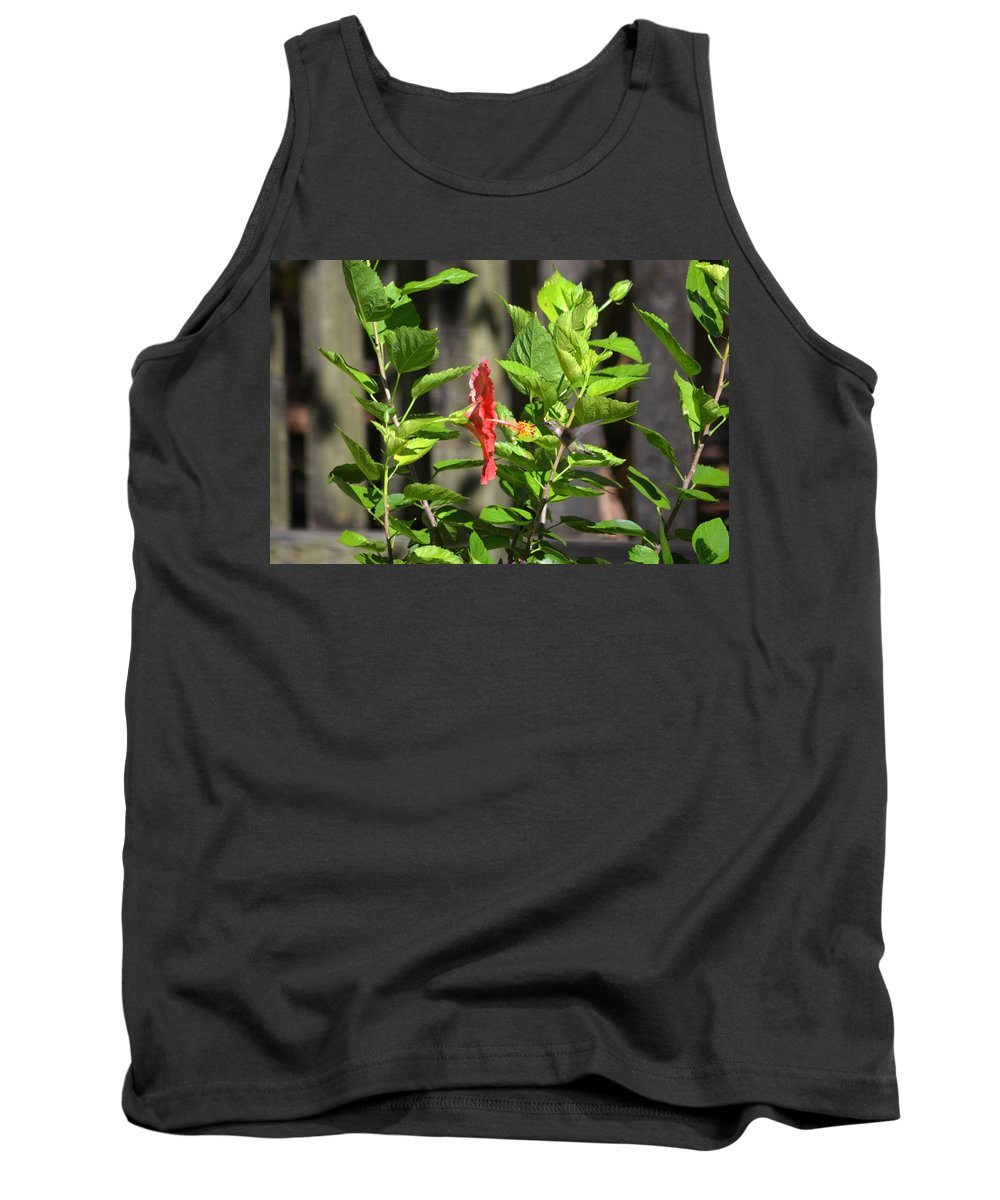 Green Tank Top featuring the photograph Green Hummingbird On Red Hibiscus Flower 2 Of 10 by Jeff at JSJ Photography