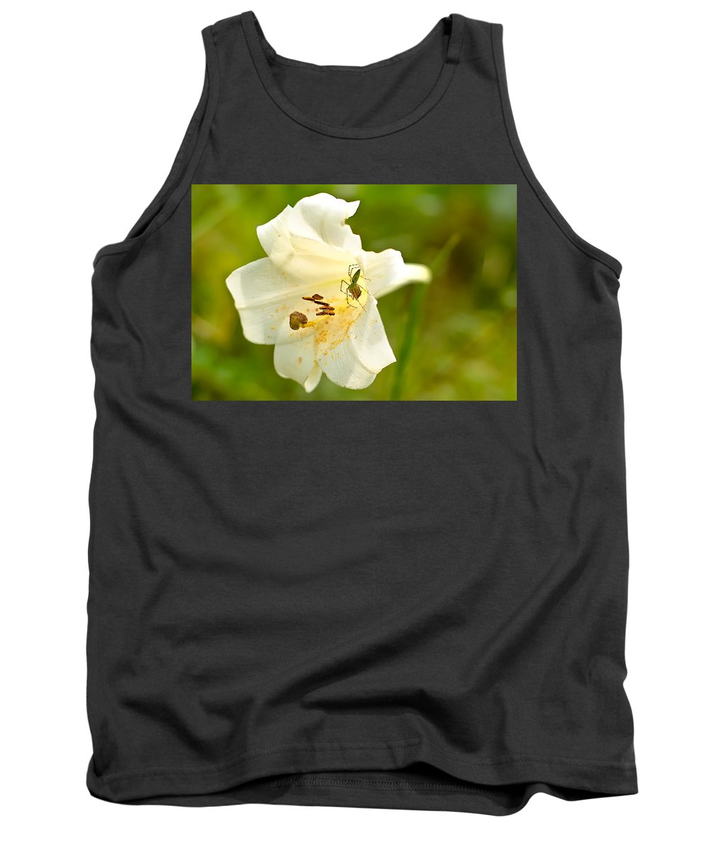 Jefferson County Tank Top featuring the photograph Green Lynx Spider by Rich Leighton