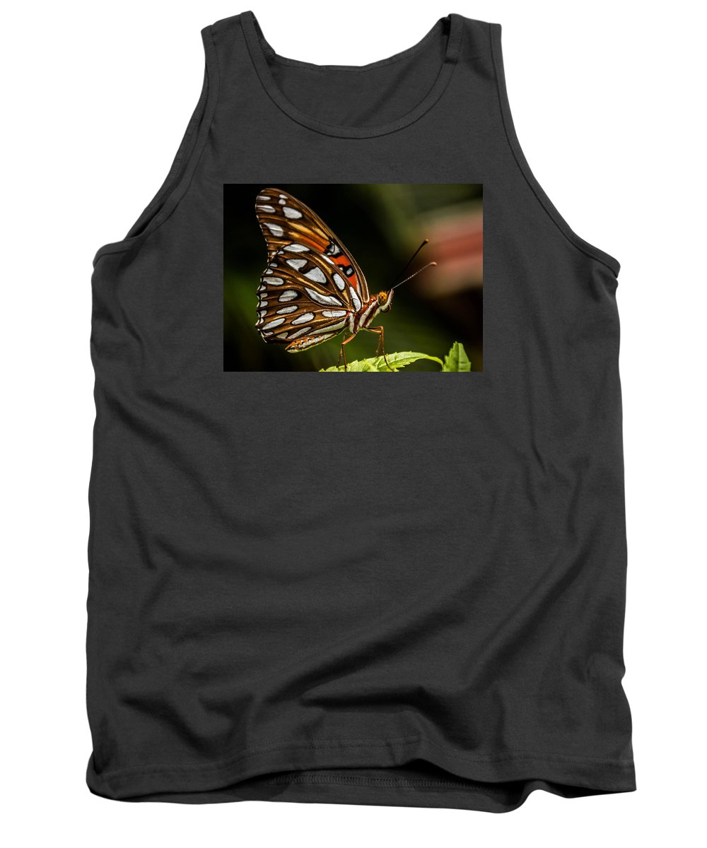 Butterfly Tank Top featuring the photograph Gulf Fritillary Butterfly by George Kenhan