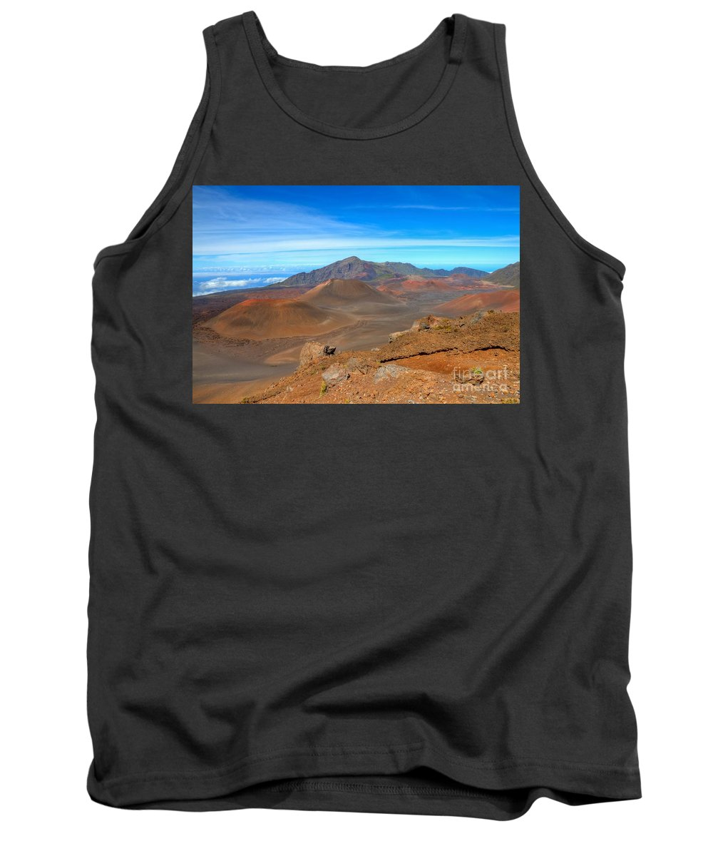 Halakeala Tank Top featuring the photograph Haleakala Lava Cones by James Anderson
