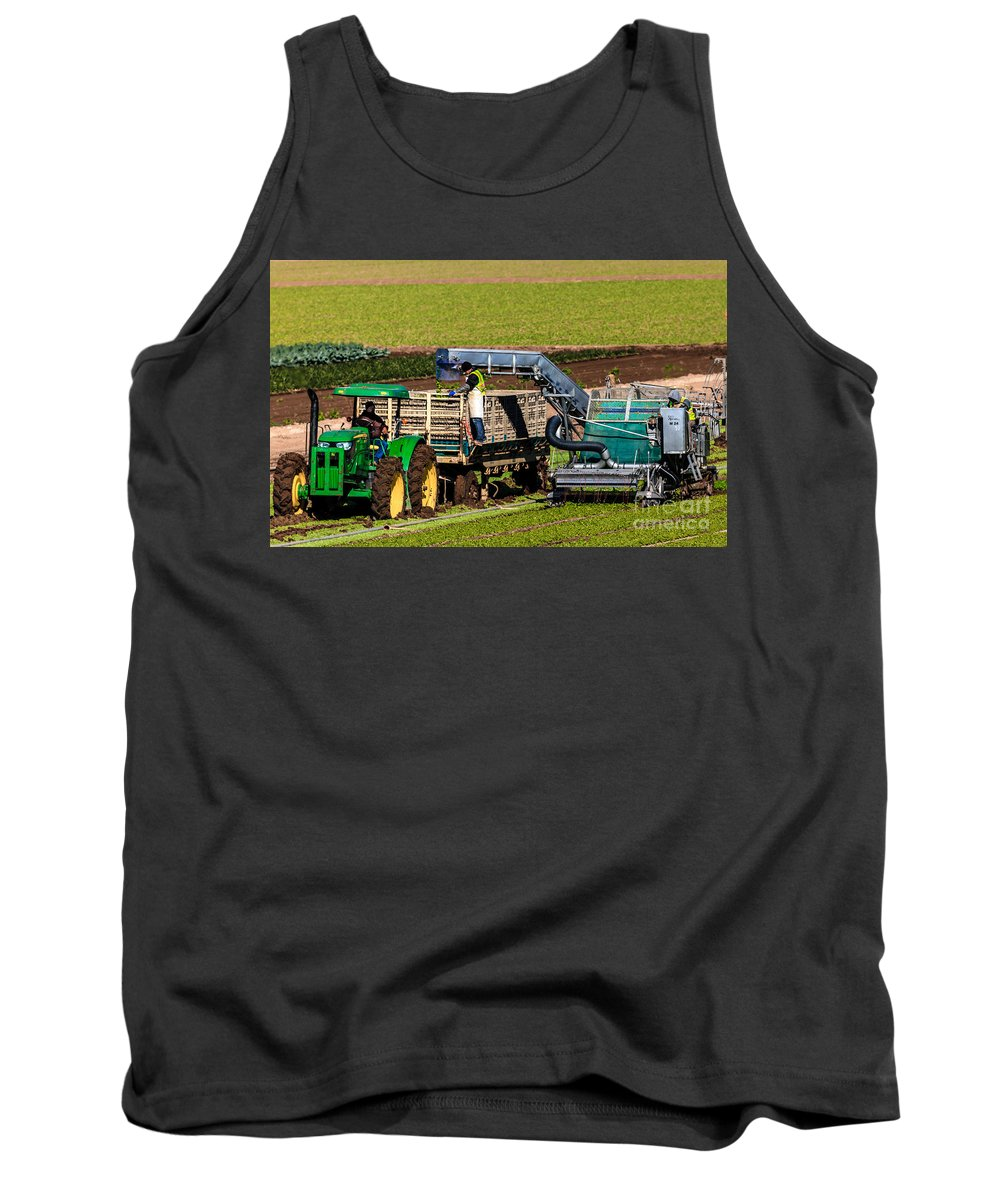Yuma Tank Top featuring the photograph Harvesting Spinach by Robert Bales