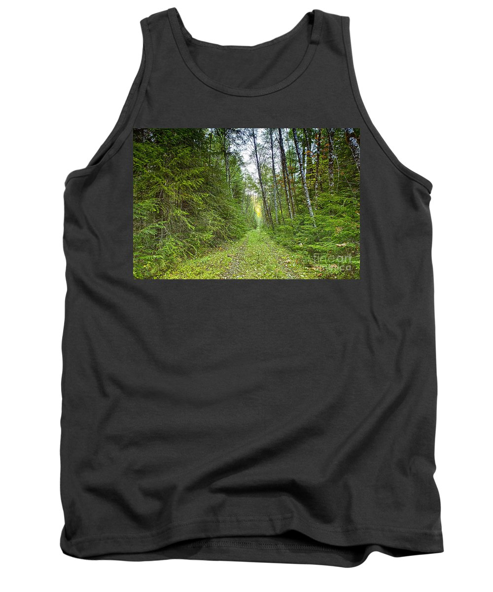 Woods Tank Top featuring the photograph Heading Back by Belinda Greb