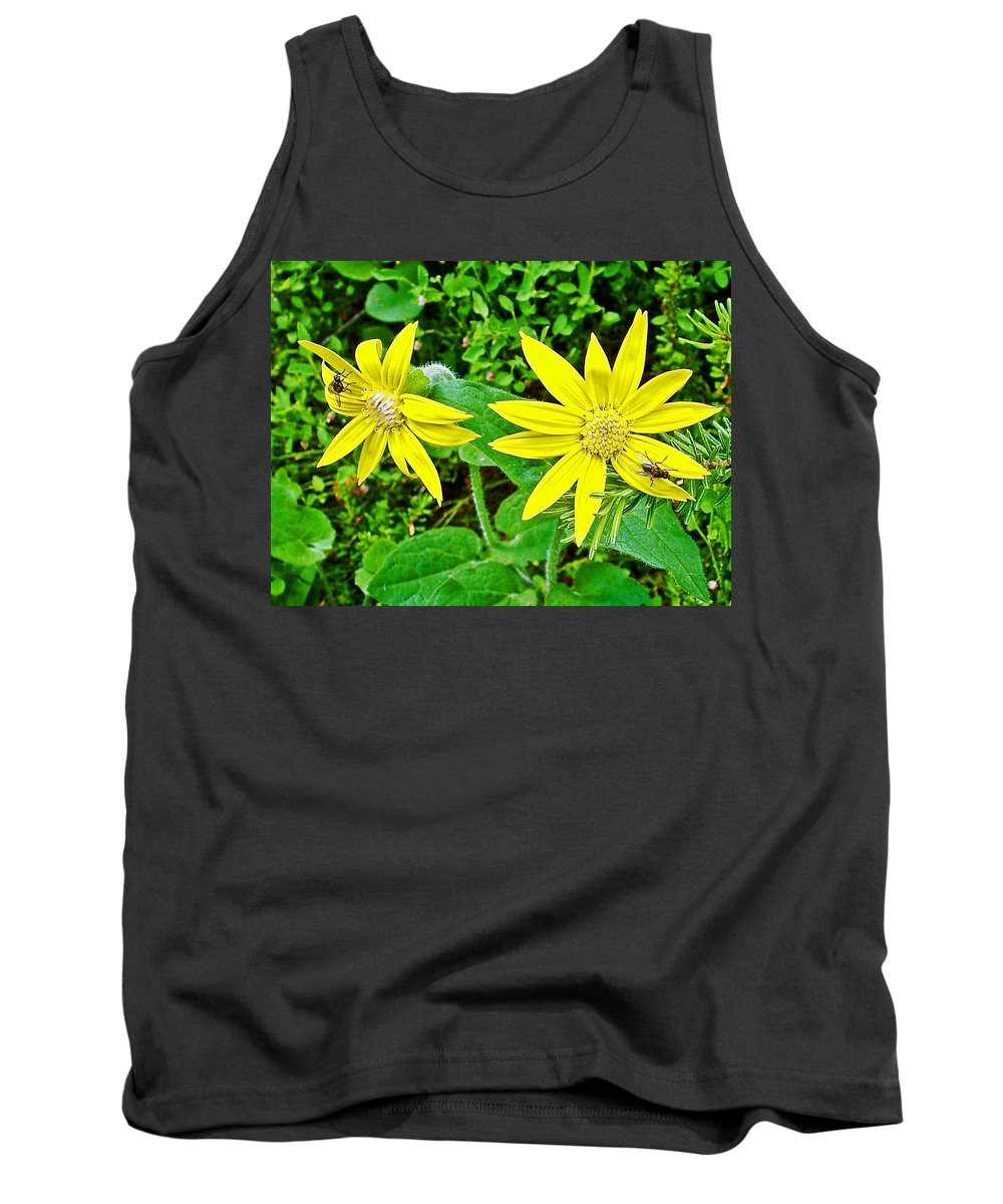 Heartleaf Arnica In Banff National Park Tank Top featuring the photograph Heartleaf Arnica In Banff National Park-alberta  by Ruth Hager