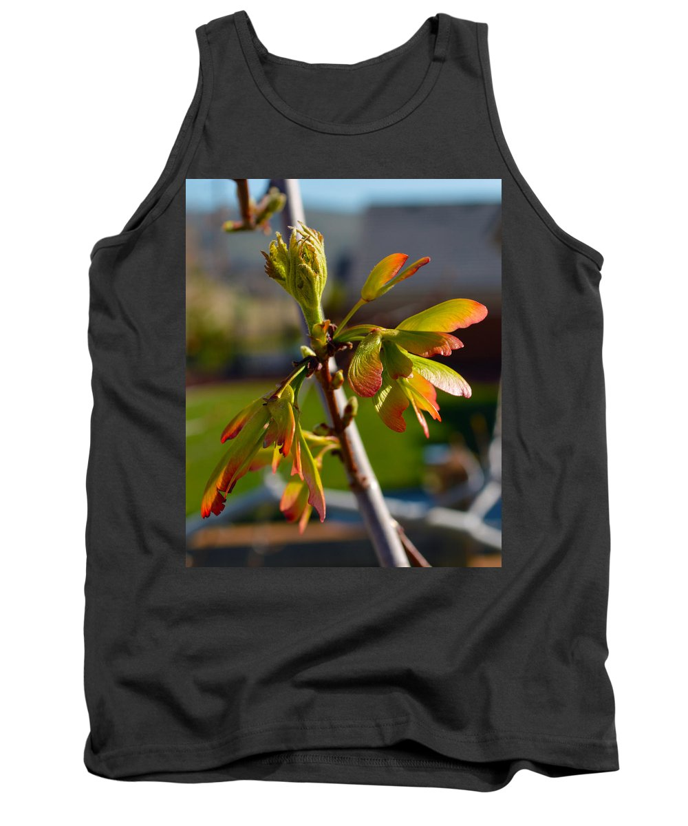 Seeds Tank Top featuring the photograph Helicopter Seeds 2 by Brent Dolliver