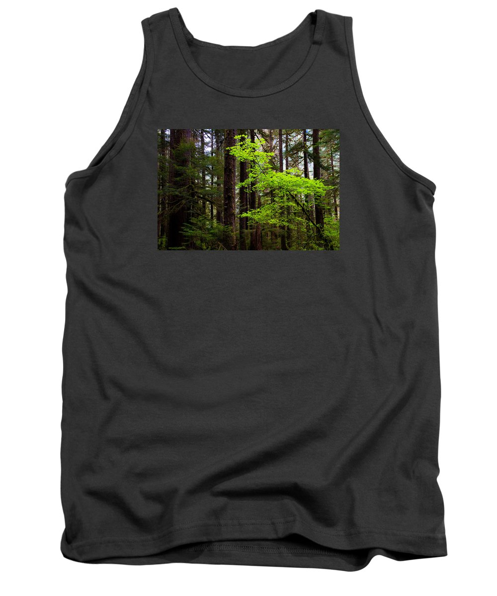 Olympic Tank Top featuring the photograph Highlight by Chad Dutson