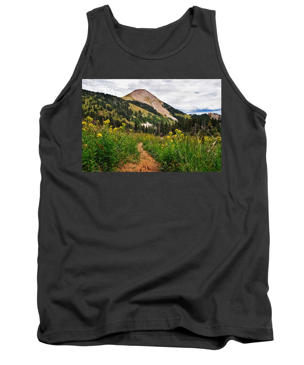 3scape Tank Top featuring the photograph Hiking In La Sal by Adam Romanowicz