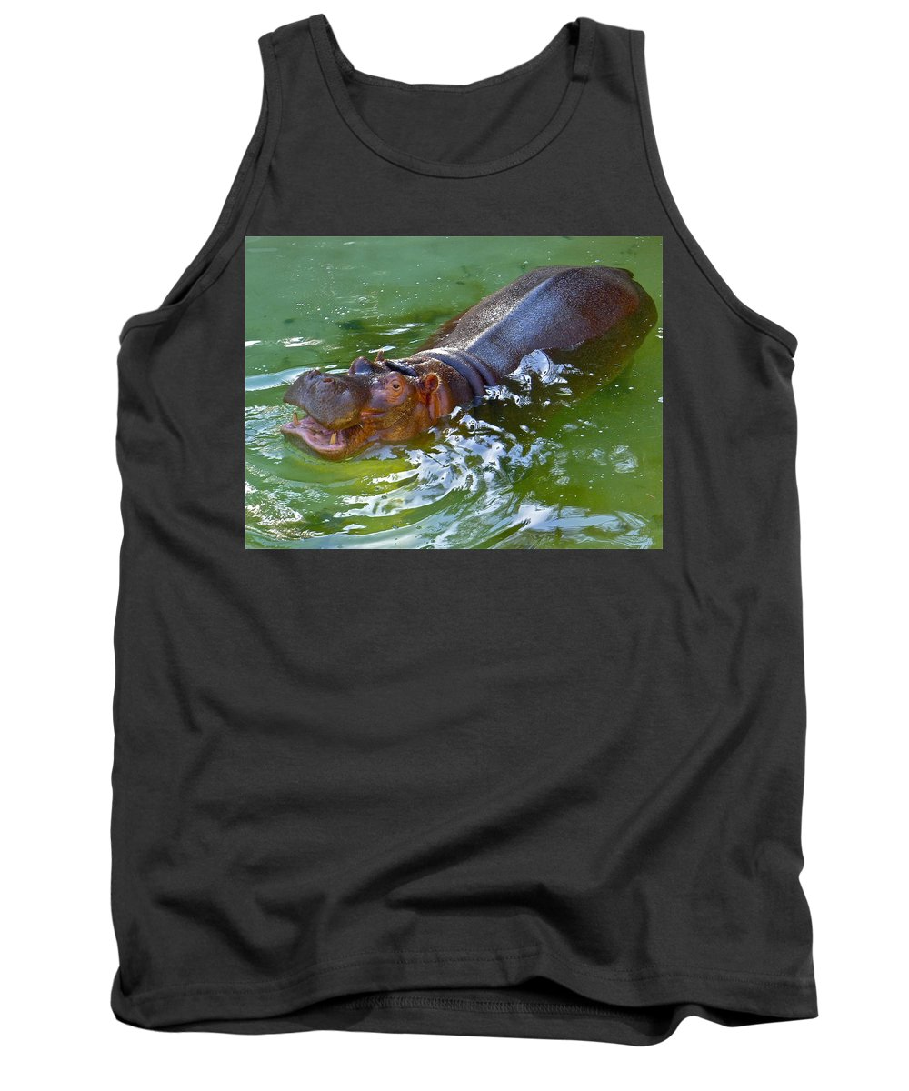 Hippopotamus Tank Top featuring the photograph Hippo by Denise Mazzocco