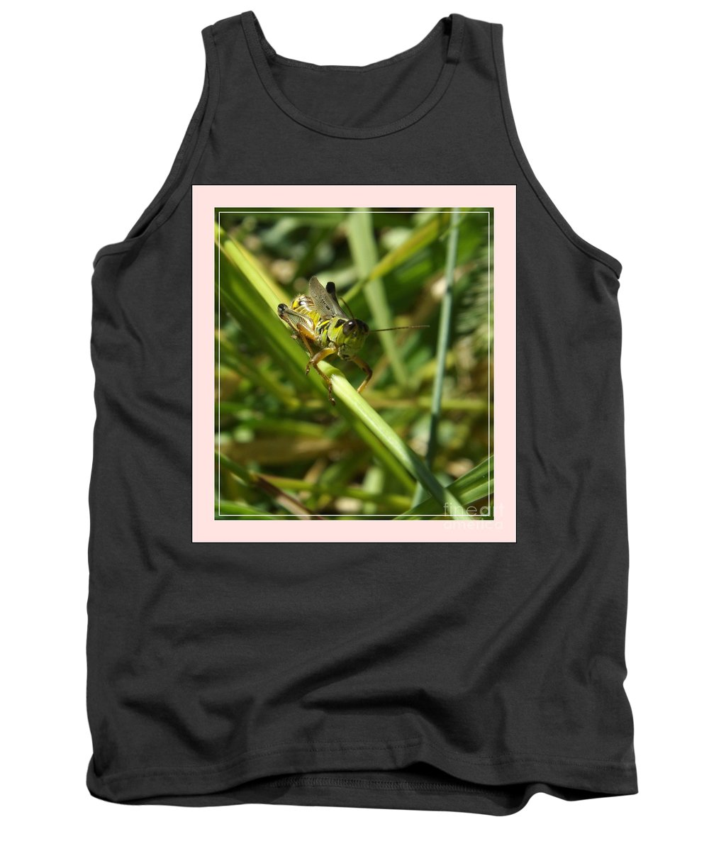 Grasshopper Tank Top featuring the photograph Holding On by Sara Raber