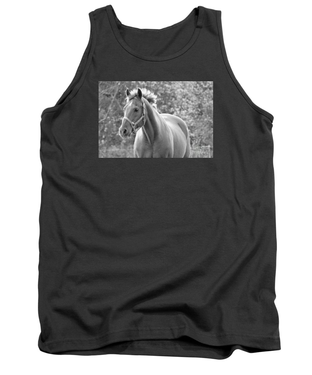 Horse Tank Top featuring the photograph Horse Black And White by Glenn Gordon