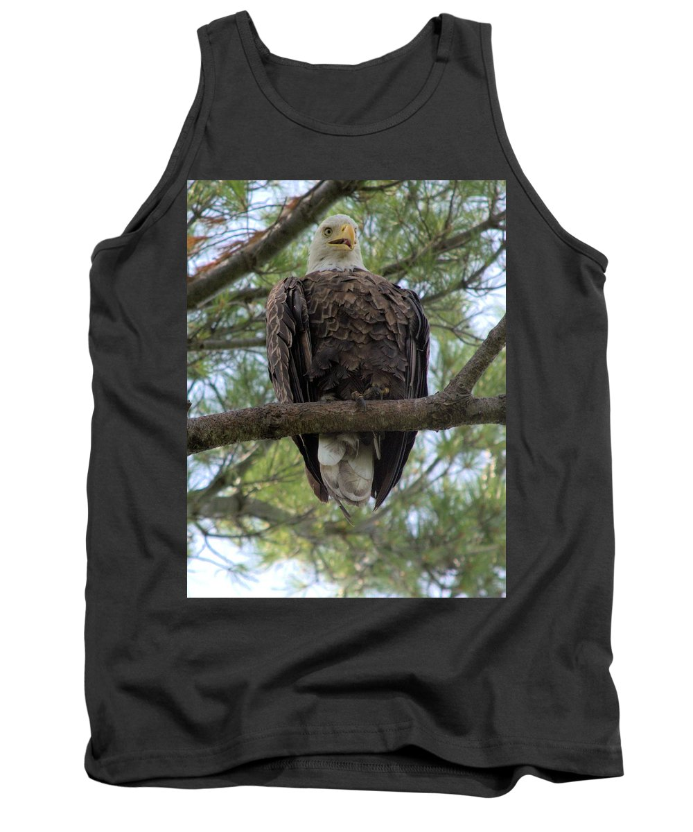 Eagle Tank Top featuring the photograph Hot Summer Perch by Bonfire Photography