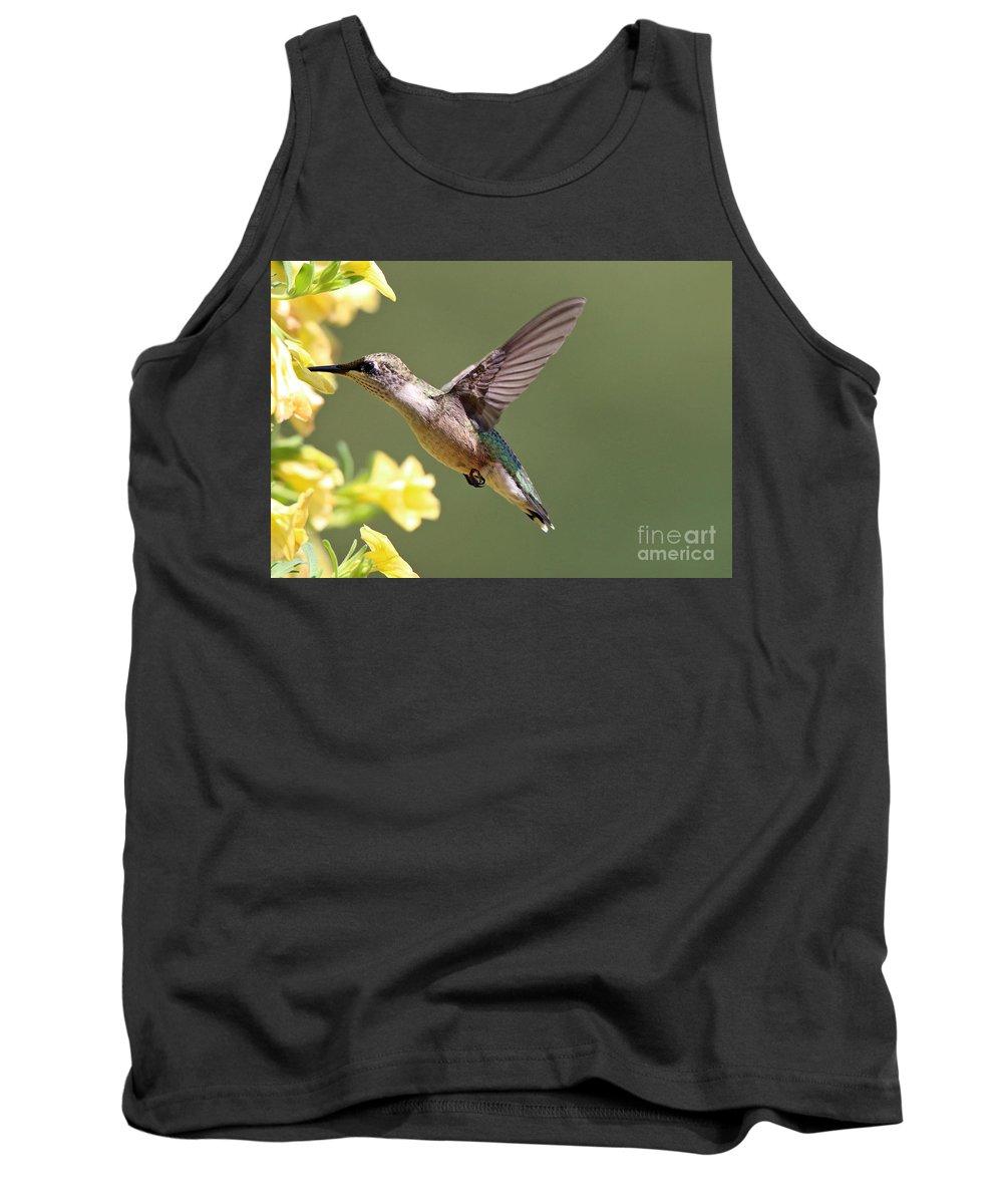 Hummingbird Tank Top featuring the photograph Hummingbird 3731 by Jack Schultz