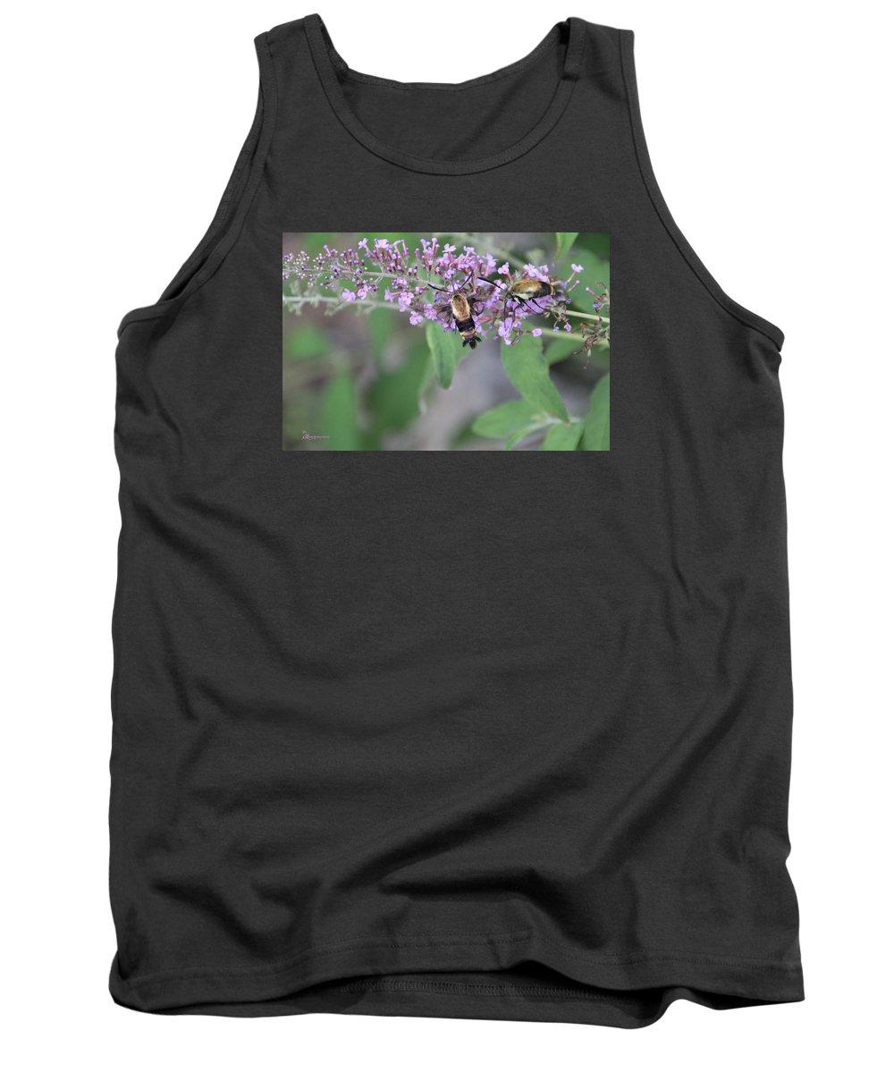 Moth Tank Top featuring the photograph Hummingbird Moths by Ericamaxine Price