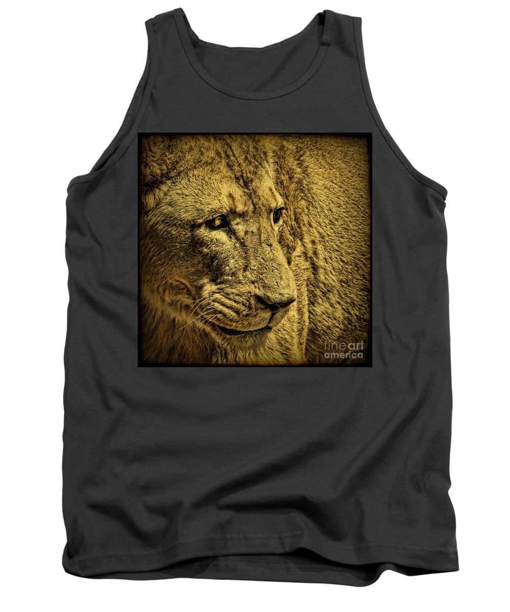 Lion Tank Top featuring the photograph Hunter by Andrew Paranavitana