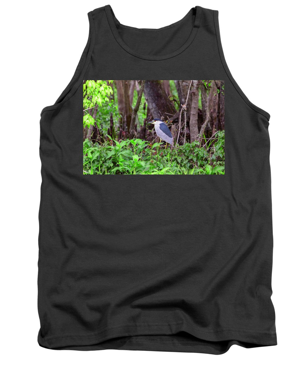 Black-crowned Night-heron Tank Top featuring the photograph Hunting by Thomas Sellberg
