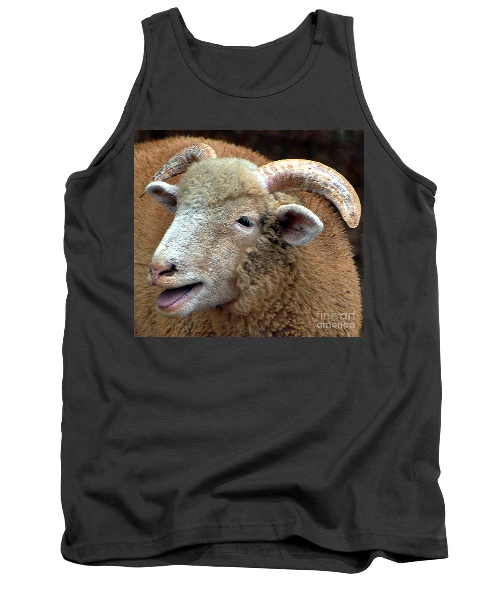 Sheep Tank Top featuring the photograph I Know A Secret by Lydia Holly
