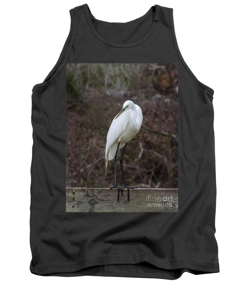 Bird Tank Top featuring the photograph I'm Mr. Black Toes by Donna Brown