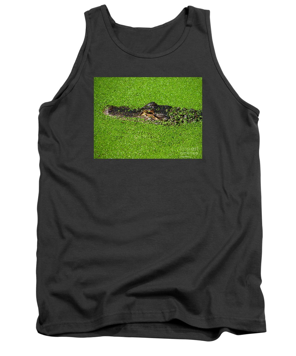 Art For The Wall...patzer Photography Tank Top featuring the photograph Incognito by Greg Patzer