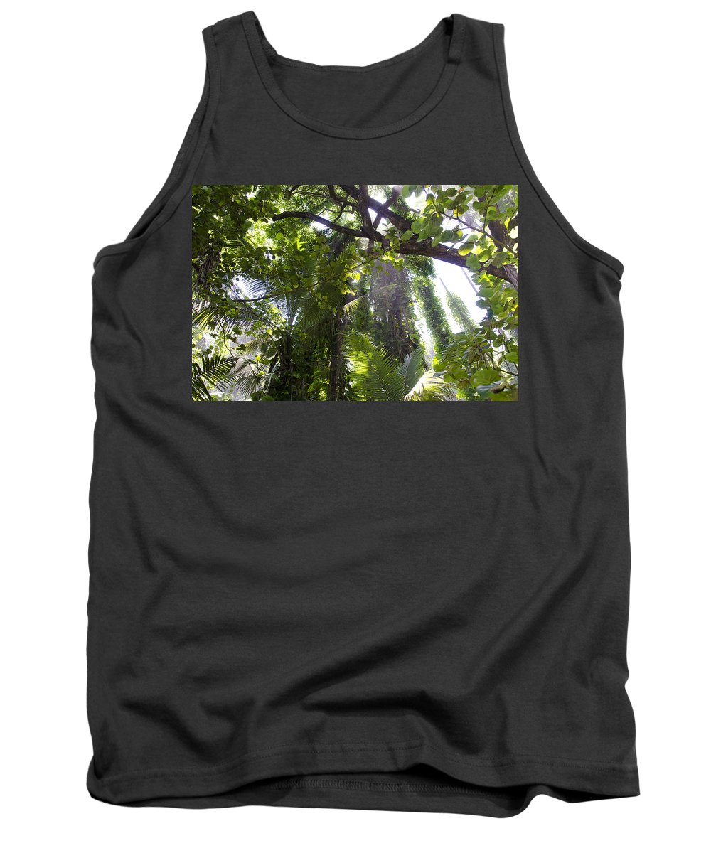 Hawaii Tank Top featuring the photograph Jungle Canopy by Daniel Murphy