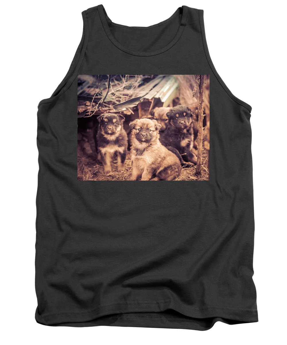Dogs Tank Top featuring the photograph Junkyard Dogs by Thomas Dilworth