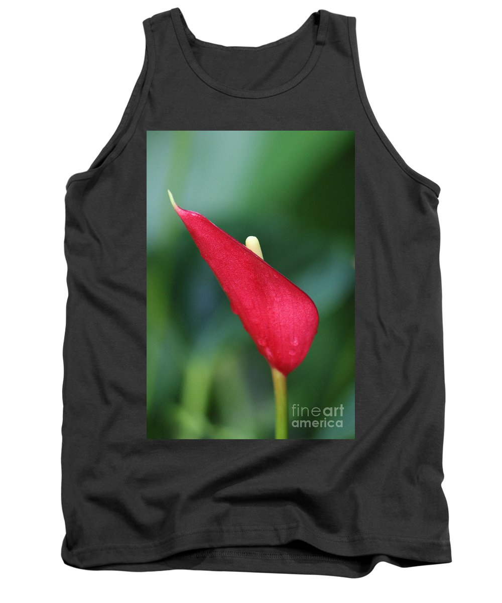 Photography Tank Top featuring the photograph Just A Peek by Jackie Farnsworth