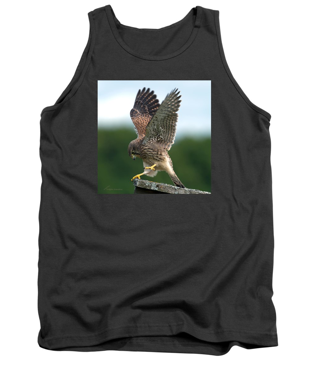Kestrel's Performance Tank Top featuring the photograph Kestrel's Performance by Torbjorn Swenelius
