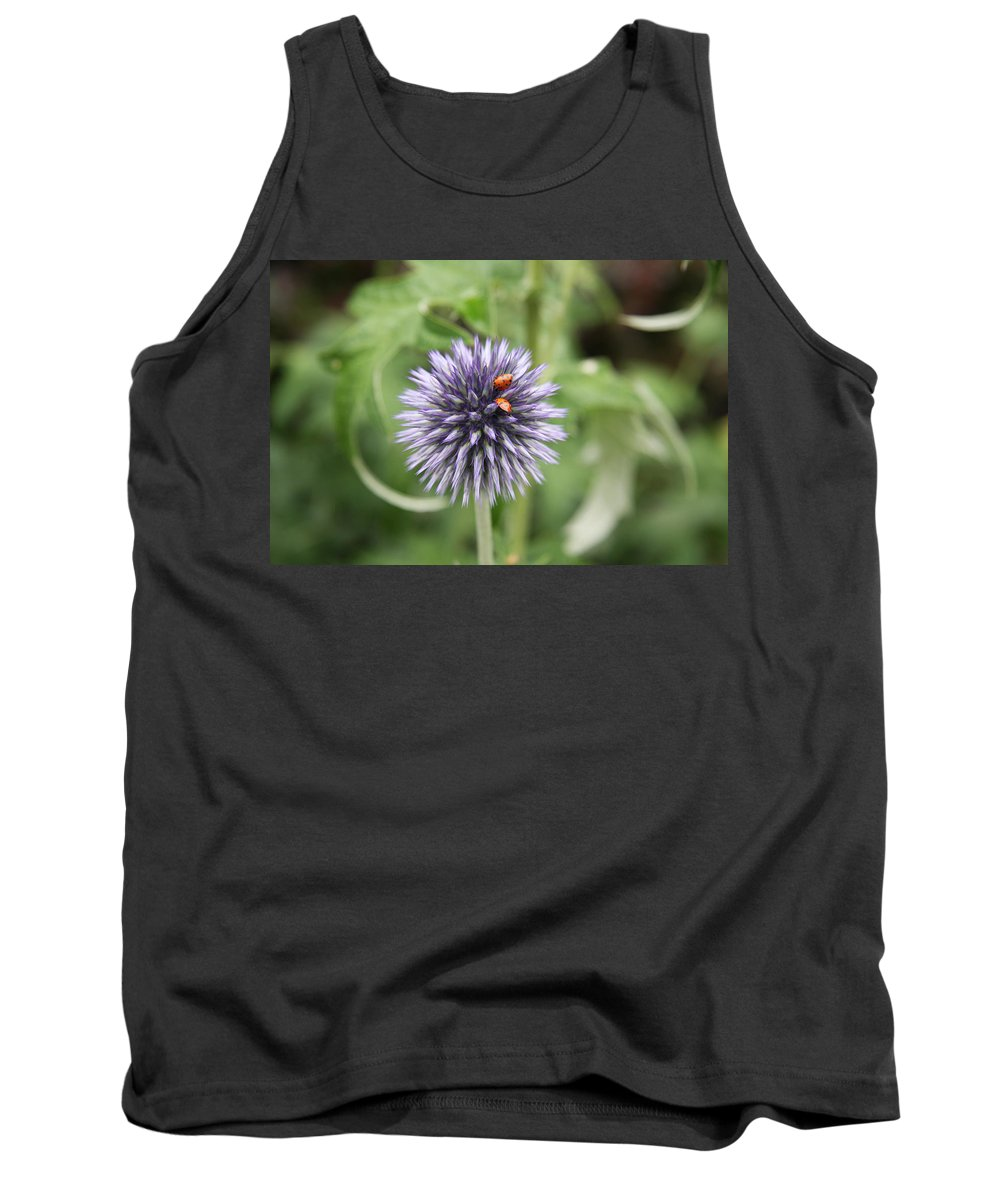 Flower Tank Top featuring the photograph Ladybugs by Christiane Schulze Art And Photography