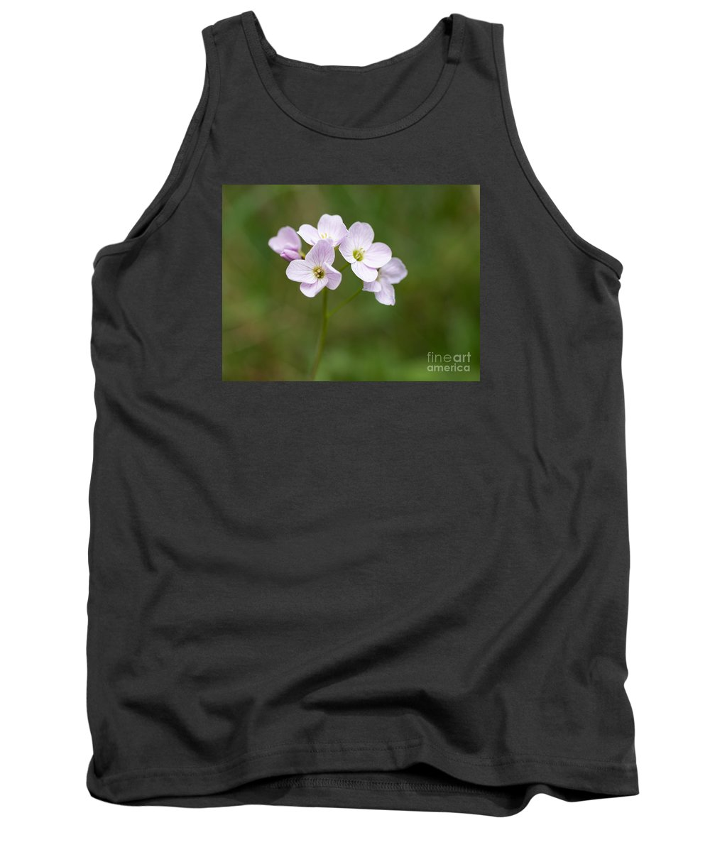 Lady's Smock Tank Top featuring the photograph Ladys Smock Or Cuckoo Flower by Liz Leyden