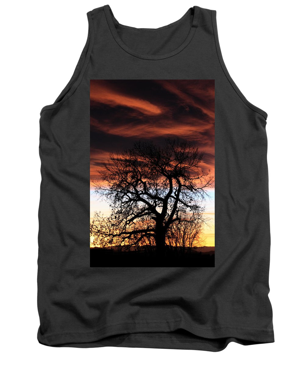 Sunset Tank Top featuring the photograph Large Cottonwood At Sunset by Shane Bechler