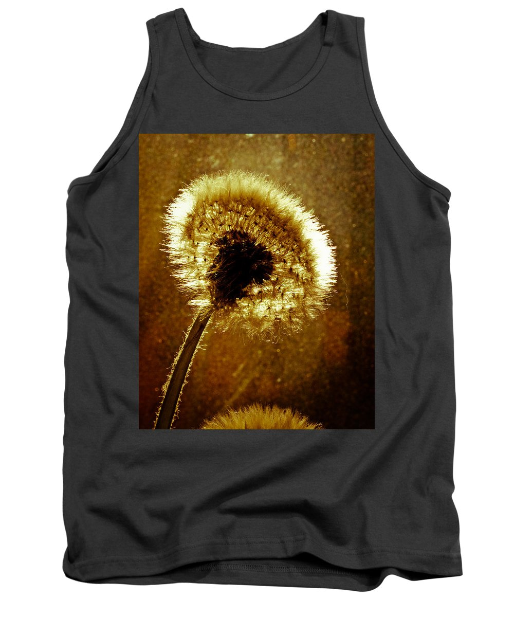 Flowers Tank Top featuring the photograph Last Light Of Day by Bob Orsillo