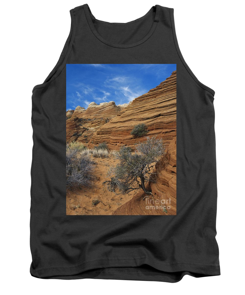 Sandstone Tank Top featuring the photograph Layered Sandstone by David Davis