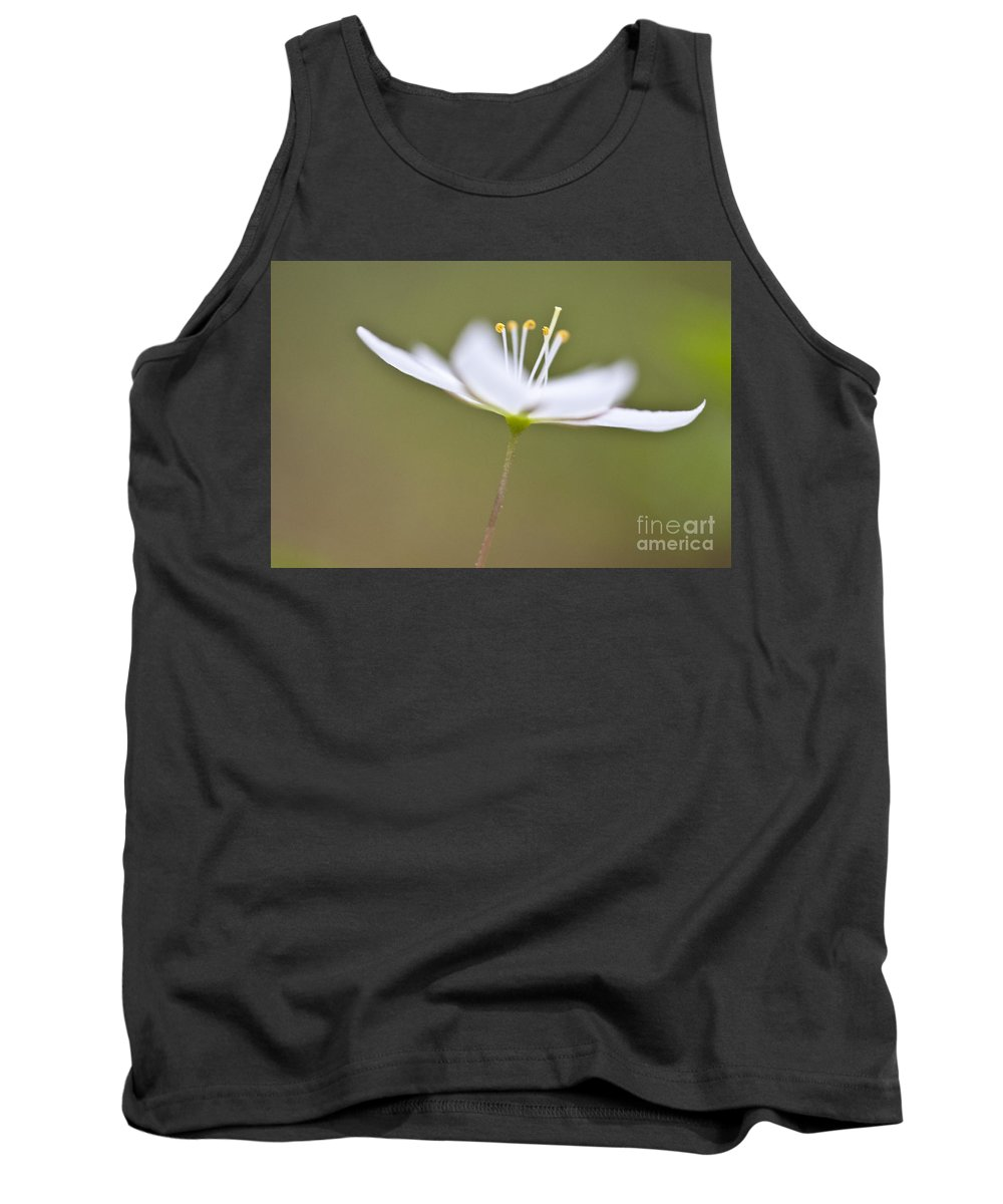 Heiko Tank Top featuring the photograph Little Arctic Starflower by Heiko Koehrer-Wagner