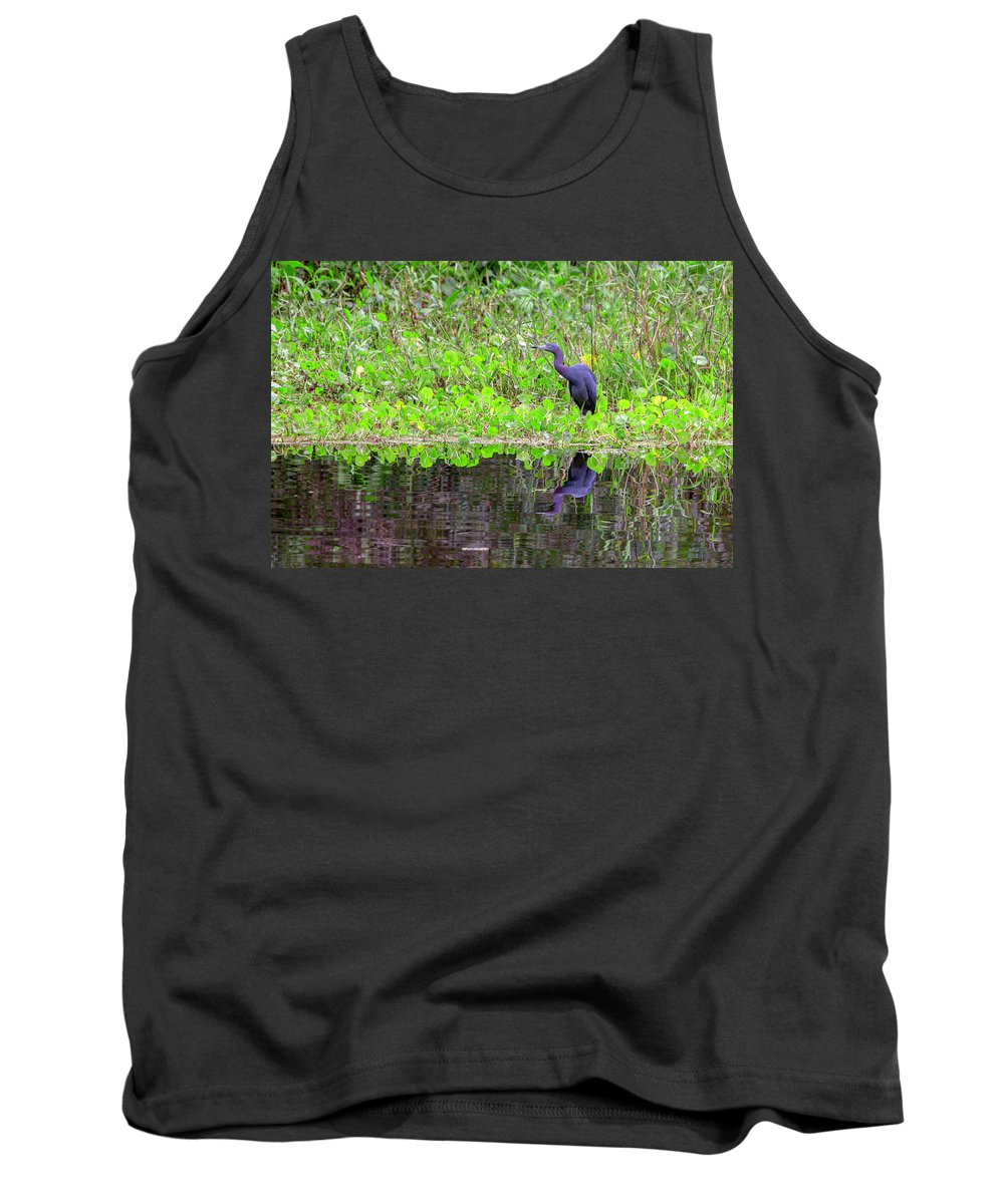 Little Blue Heron Tank Top featuring the photograph Little Blue by Thomas Sellberg