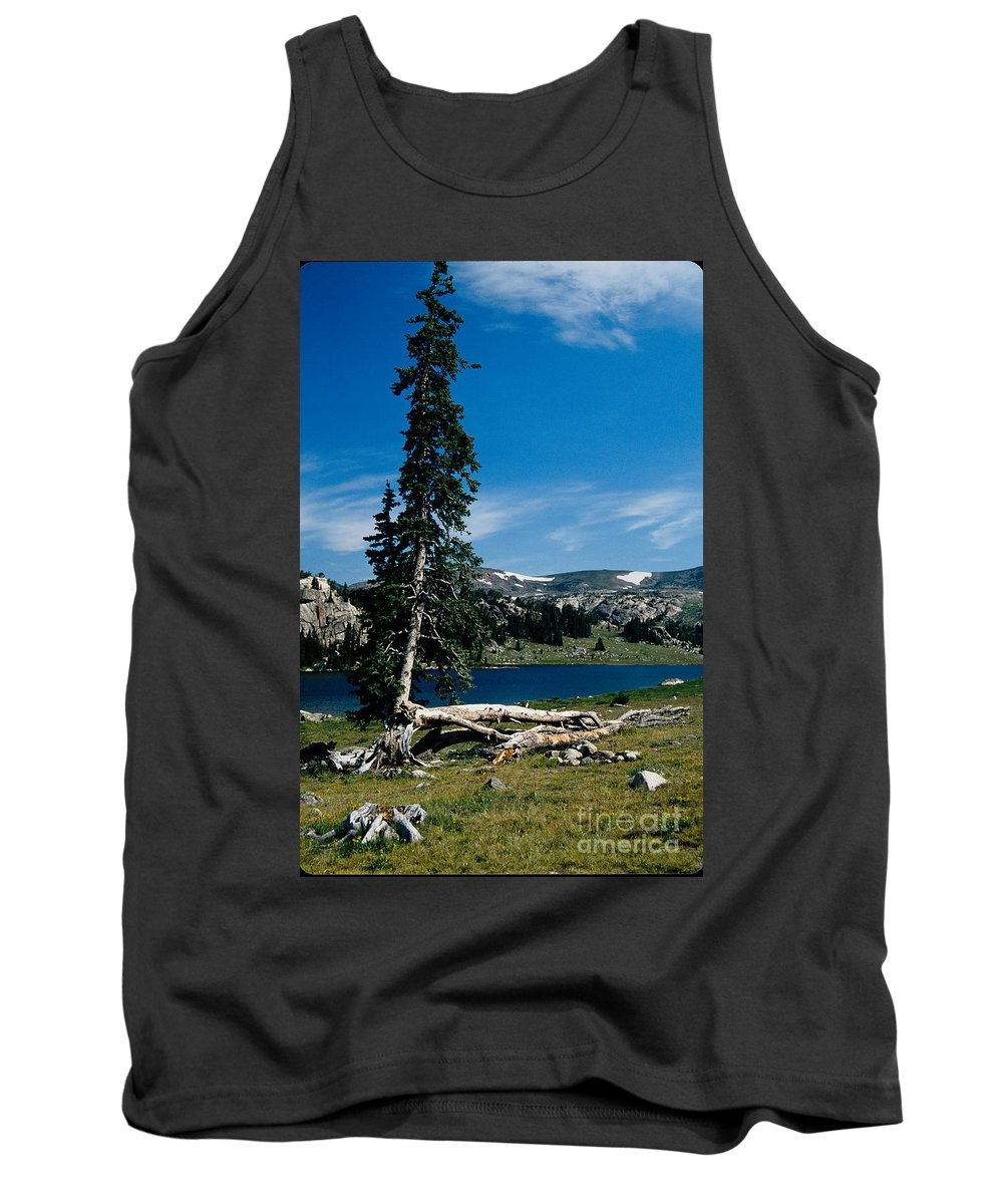 Mountains Tank Top featuring the photograph Lone Tree At Pass by Kathy McClure