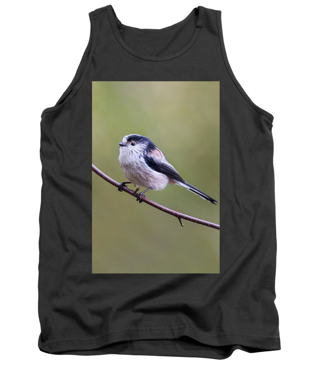 Long Tailed Tit Tank Top featuring the photograph Long Tailed Tit  by Chris Smith