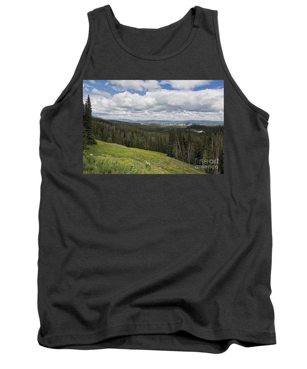Yellowstone Tank Top featuring the photograph Looking To The Canyon - Yellowstone by Belinda Greb