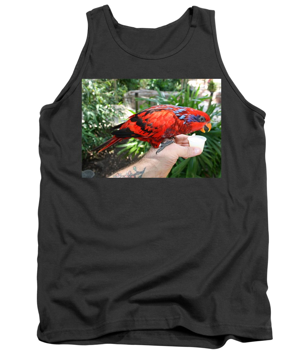 Tampa Bay Tank Top featuring the photograph Lory Landing by David Nicholls