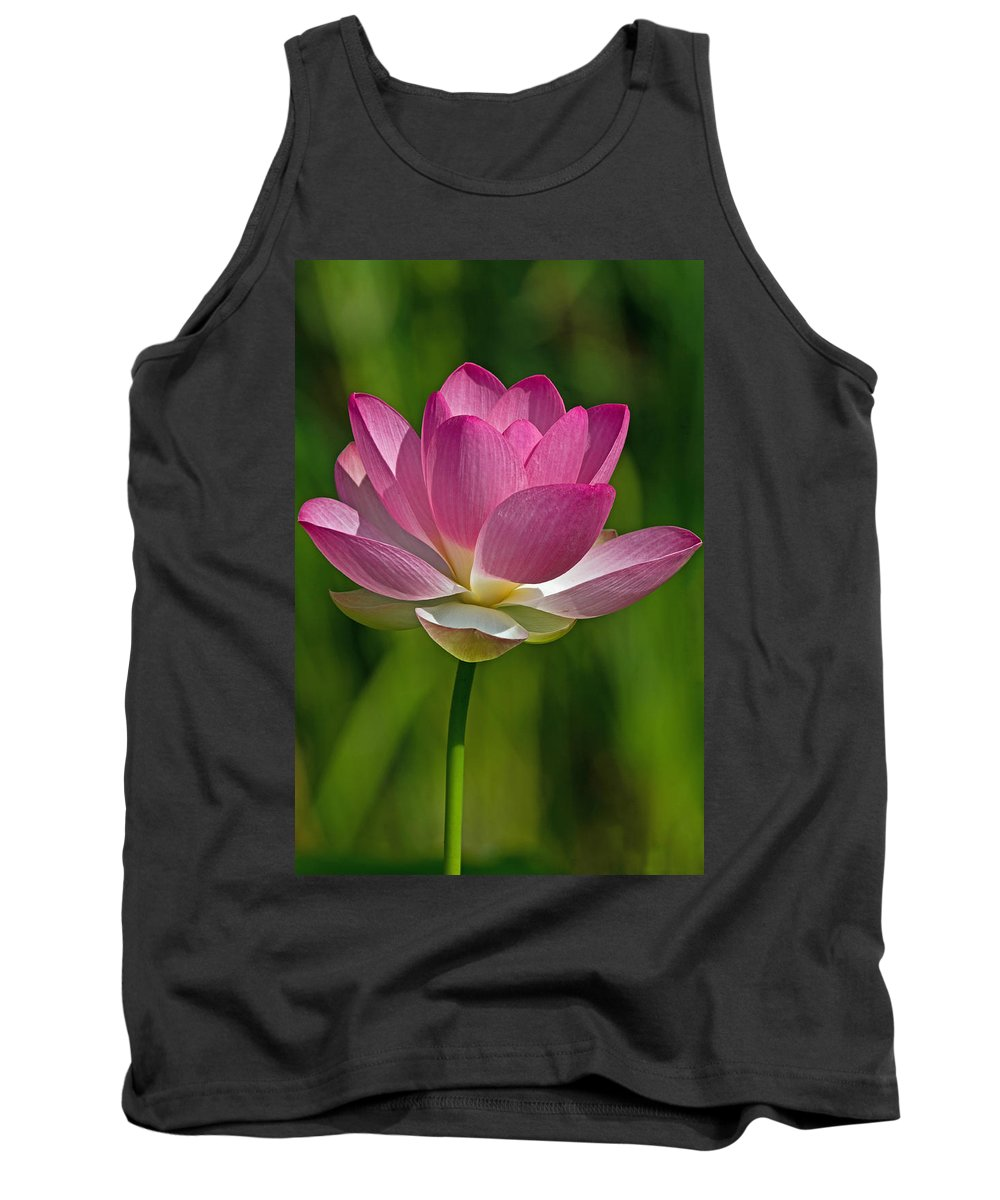 Lotus Tank Top featuring the photograph Lotus Bloom by Jerry Gammon