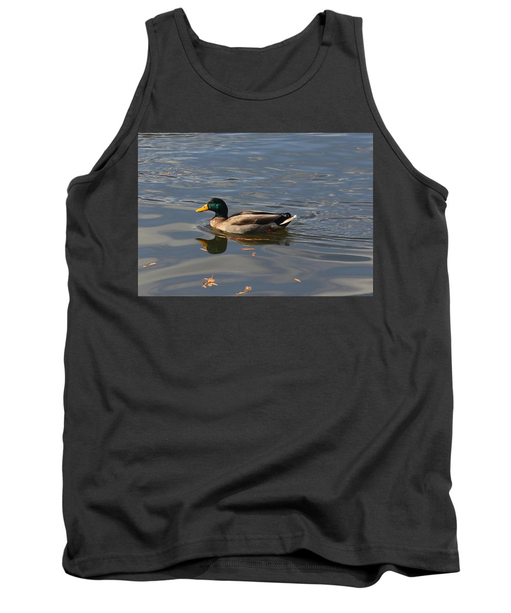 Duck Tank Top featuring the photograph Majestic Mallard by Denise Mazzocco