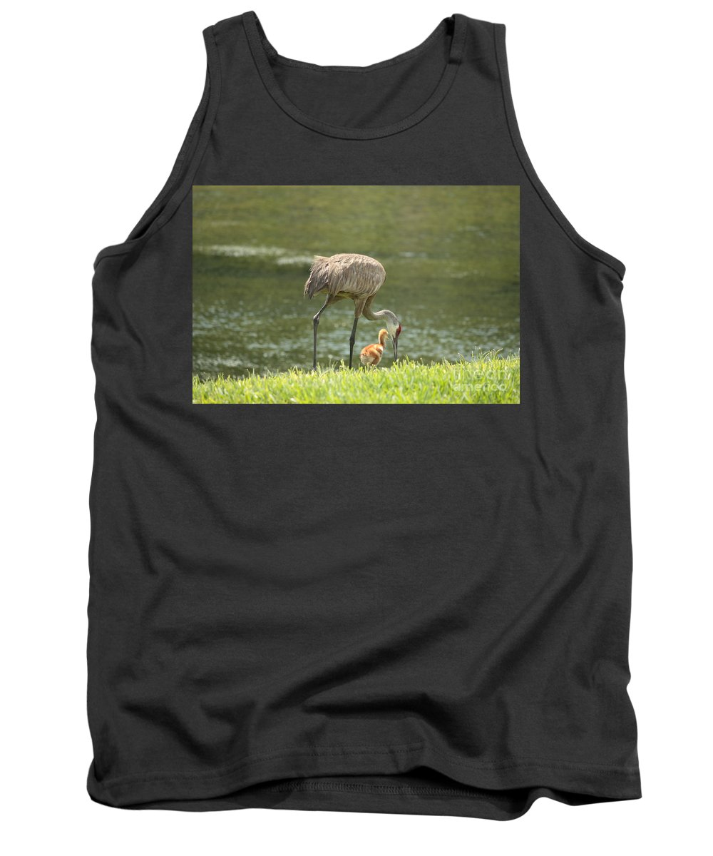 Sandhill Crane Tank Top featuring the photograph Mama And Chick by Carol Groenen