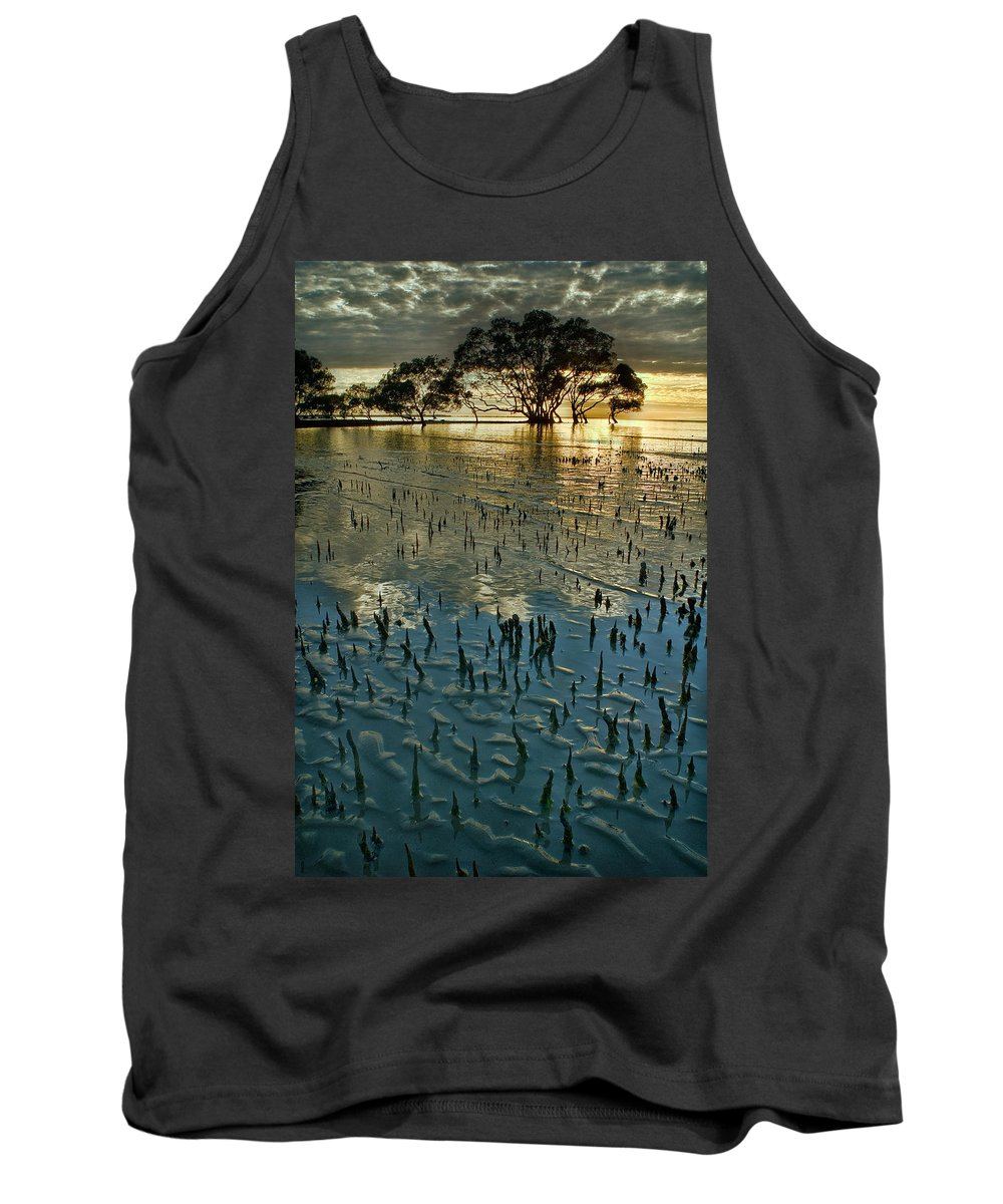 2010 Tank Top featuring the photograph Mangroves by Robert Charity