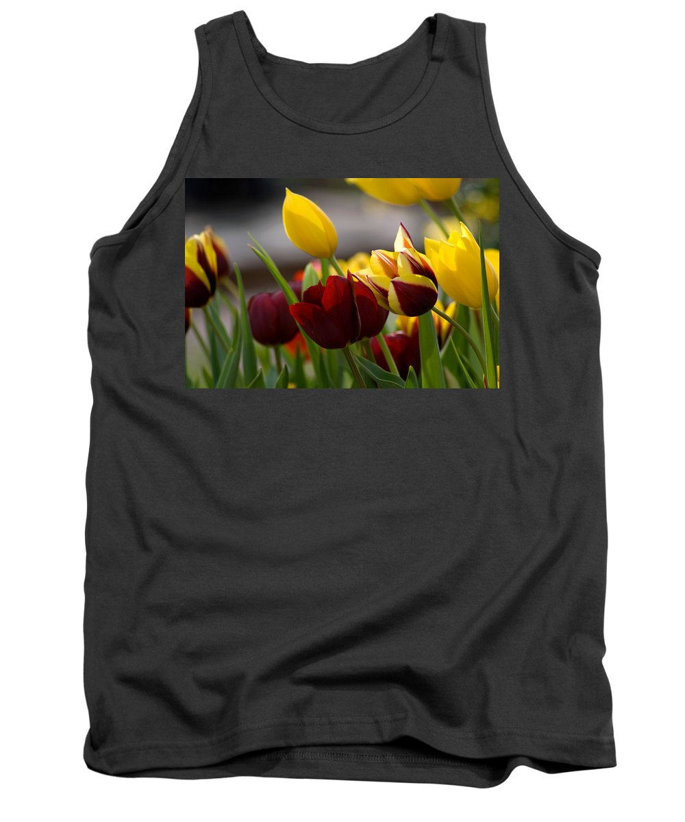 Flower Tank Top featuring the photograph Maroon And Gold Tulips by Benjamin Reed