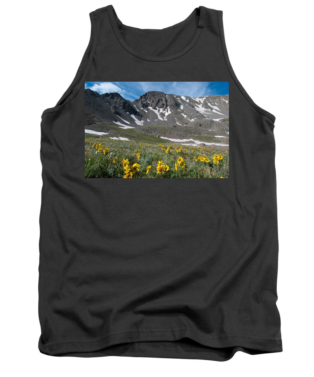 Missouri Mountain Tank Top featuring the photograph Missouri Mountain And Wildflower Landscape by Cascade Colors
