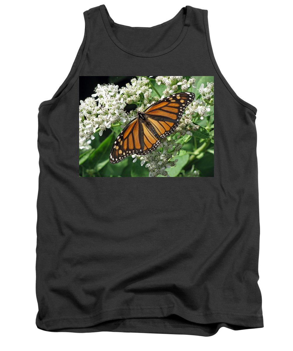 Butterfly Tank Top featuring the photograph Monarch Butterfly 62 by Pamela Critchlow