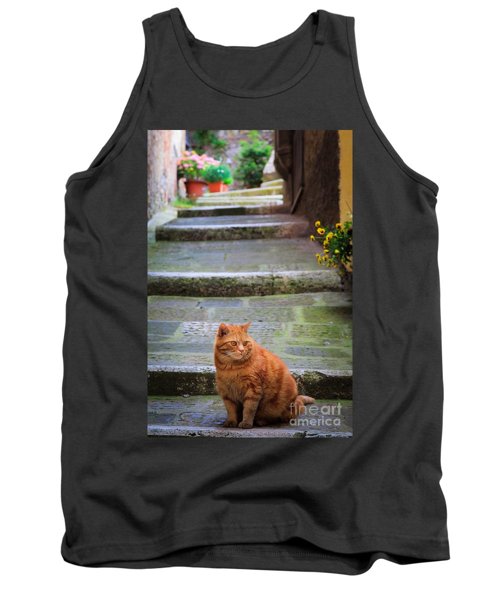 Europe Tank Top featuring the photograph Montepulciano Cat by Inge Johnsson