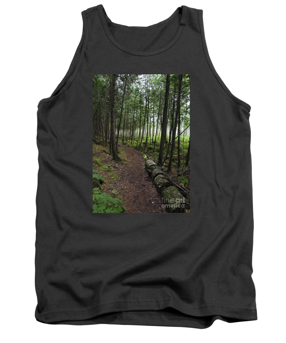 Festblues Tank Top featuring the photograph Morning Mist.. by Nina Stavlund
